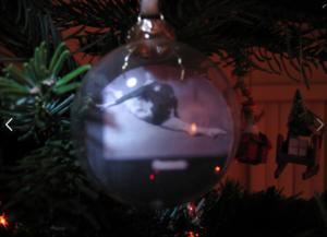 Yang Bo ornament