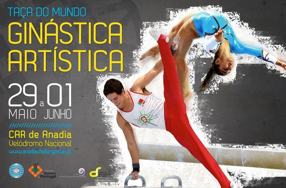 poster for the 2014 Anandia World Cup