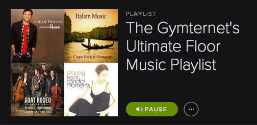 The Gymternet's Ultimate Floor Music Playlist
