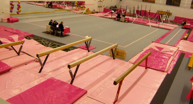 pink south durham gymnastics vlub
